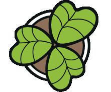 Logo van Stichting ZaaiGoed