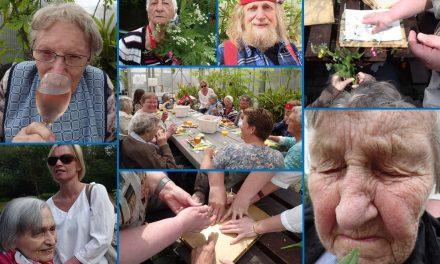 Feest in Alkmaar met Magentazorg!