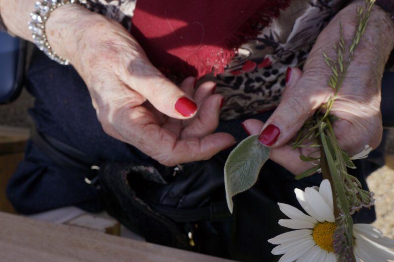 Lamsoor voelen in de Zintuigentuin, een project van Stichting Zaaigoed