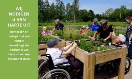 De Zintuigentuin in Haarlem, voor ouderen met een visuele beperking