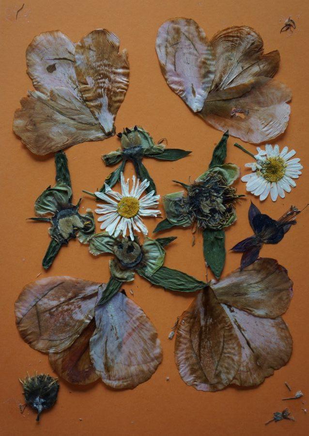 Herbarium schilderij van An en Ria