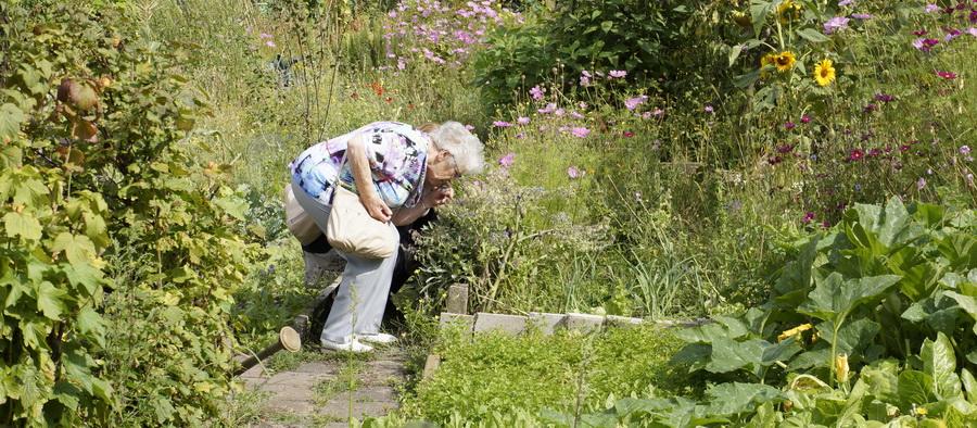 Samen ruiken aan plantjes in de moestuin!