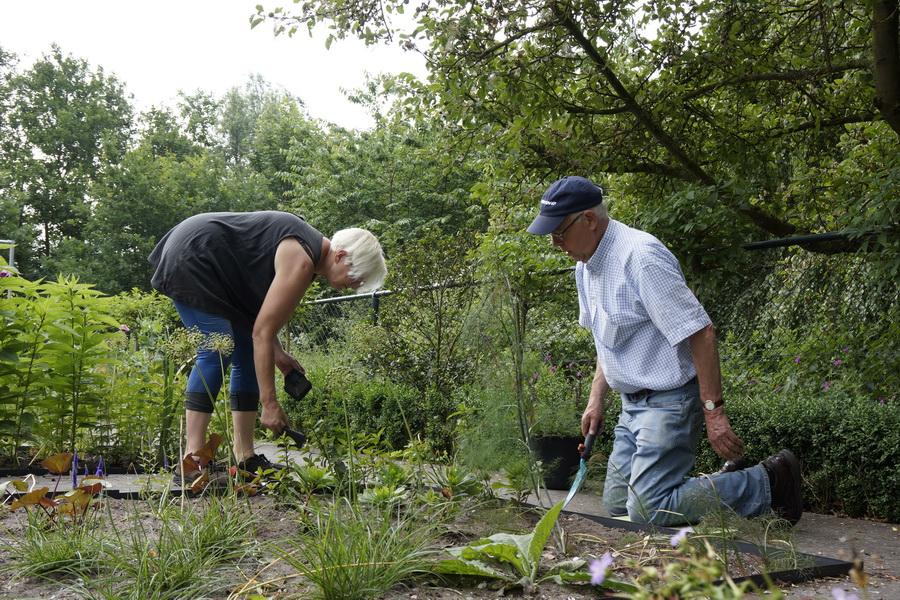 Vrijwilligers nemen anderen mee de tuin in om samen te tuinieren